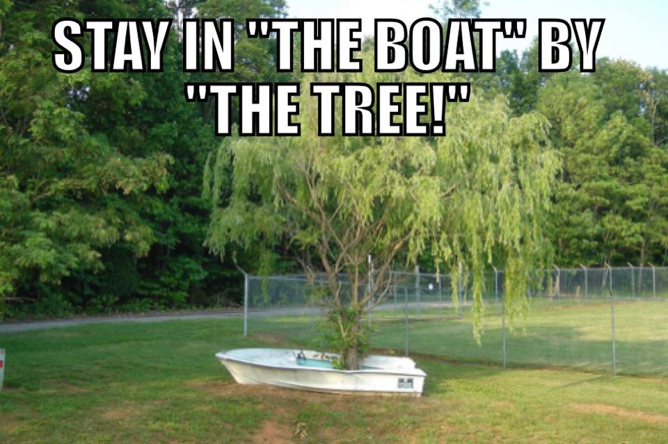 Stay by the tree in the boat