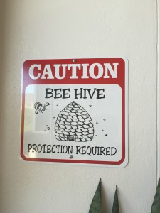 Look out! Real bees!